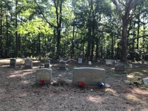 The Bolton family cemetery, north of Ellerbe.