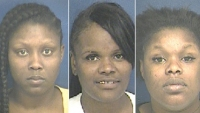 Alysia McCall, Shekia McNeill and Jasmine McRay are facing felony charges after allegedly stealing merchandise and leading police on a chase through three counties.