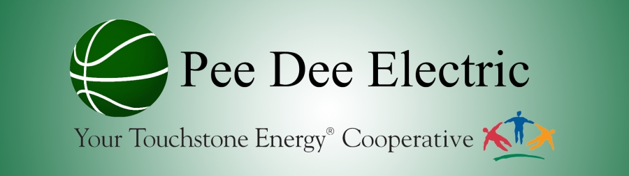 The Richmond Observer Pee Dee Electric Offering Middle Schoolers