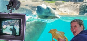 The North Carolina Zoo is offering virtual camps for kids this summer.